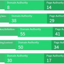 Domain Autorität steigern von Lifestyler24